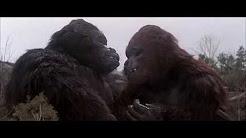 King Kong Lives 1986.Full.[Movie].HD