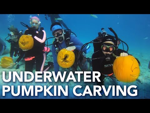 Rob and Hilary - Hilary's Weird News - Underwater pumpkin carving