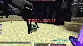Legendary Enderman Pet in a Private Lobby - Hypixel Skyblock