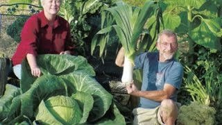 The Secrets of Growing Giant Vegetables