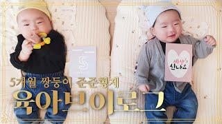 [육아브이로그] 5개월쌍둥이일상 | 이유식시작 | 무한…