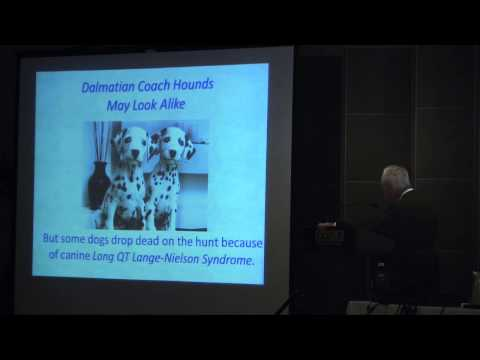 Utilizing the ECG in ACHD | Ahmanson/ UCLA Congential Heart Disease Center