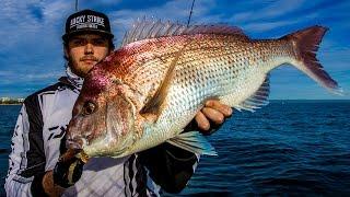 Kayak Fishing Moreton Bay- Snapper & Grunter
