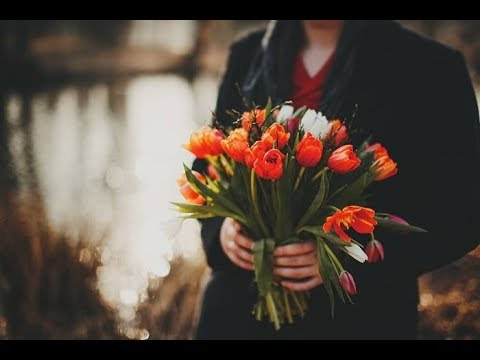 Коля, выручай! Можешь на мне завтра жениться?