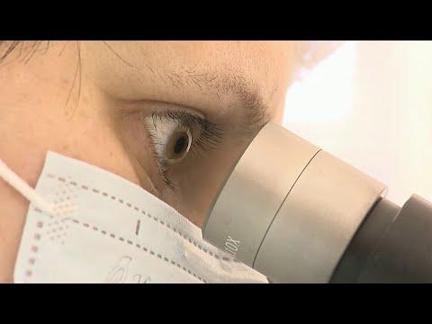 Роспотребнадзор сообщает о начале испытаний вакцины против коронавирусной инфекции.