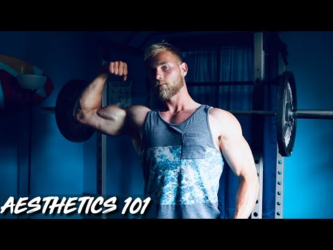 How to Build An Aesthetic Physique!