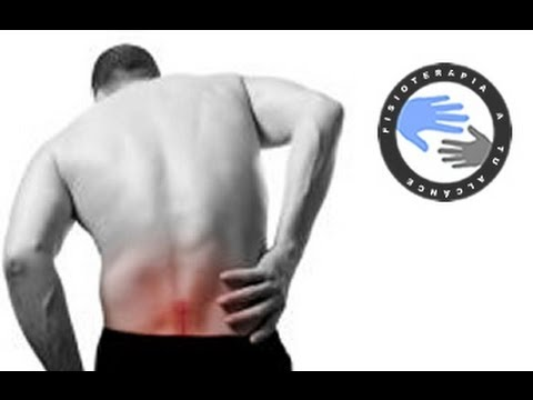 Low back pain and sciatica, exercises to relieve back pain  /  Physiotherapy at home