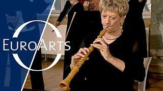 J.S. Bach - Brandenburg Concertos (Freiburg Baroque Orchestra)