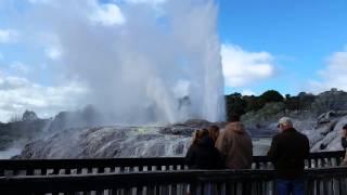 Pohutu geyser at Te Puia in Rotorua