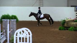 Caitlin Boyle and Goodnight Gracie (NCAA Equestrian Nationals)