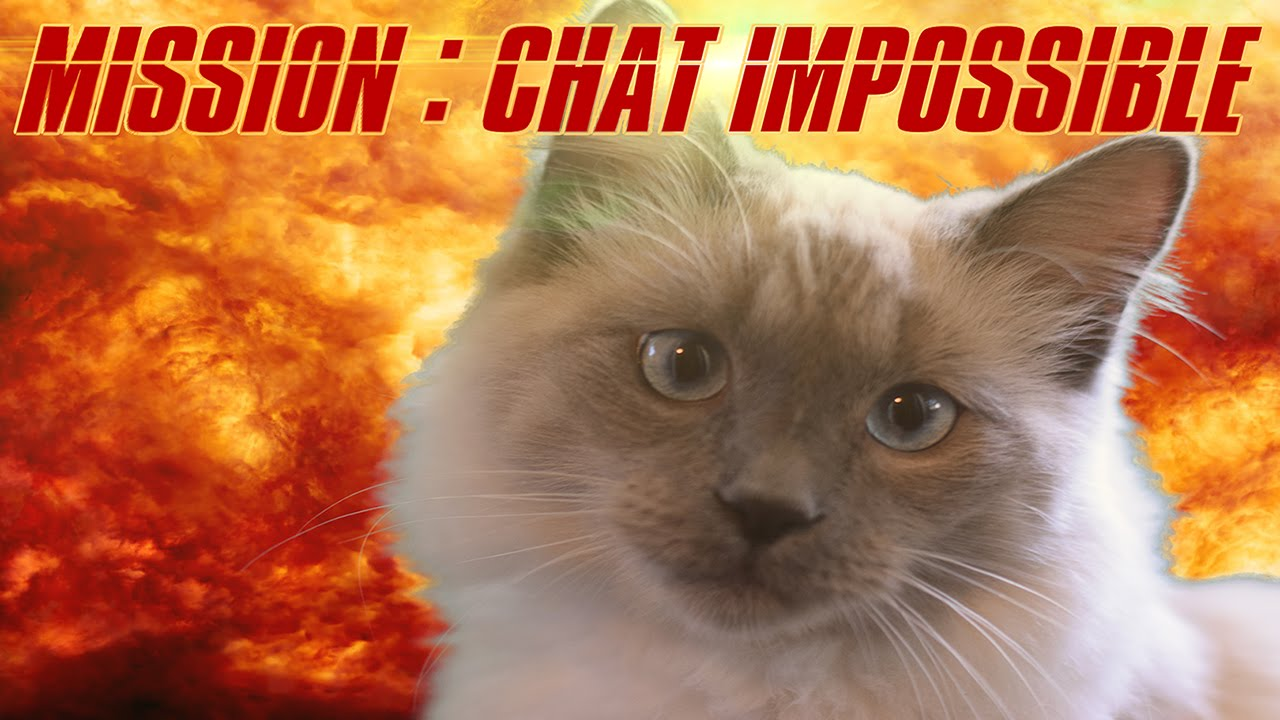 Mission chat impossible