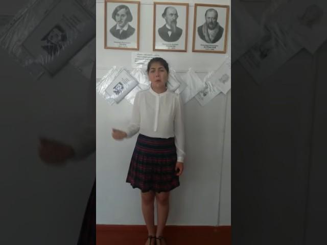 Изображение предпросмотра прочтения – ЗаринаМамбетова читает произведение «НаВолге» Н.А.Некрасова