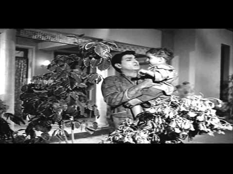 Zamindar Movie (1965) | Kasturi Ranga Ranga Video Song | Nageswara Rao, Krishna Kumari