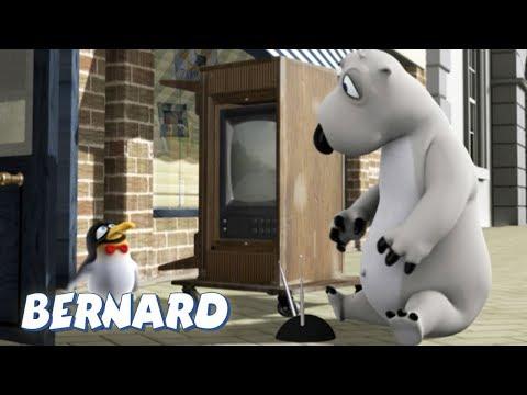 Bernard Bear  Watching TV AND MORE  30 min Compilation  Cartoons for Children