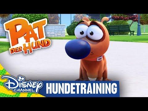 pat-der-hund---clip:-hundetraining-|-disney-channel