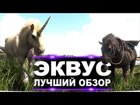 Эквус (Equus) в АРК. Лучший обзор: приручение, разведение и способности  в Ark