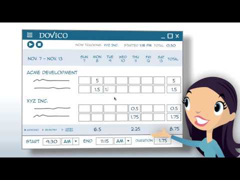 Dovico Time Tracking Software - customizable for you!