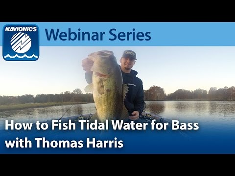 Webinar: Fishing for Bass in Tidal Waters with Thomas Harris
