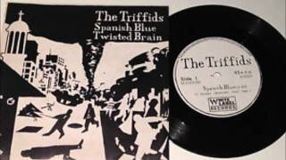 "The Triffids-""Spanish Blue"" (1982)"