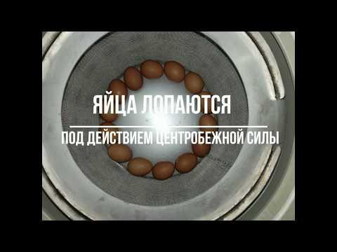 Жесть! Давим яйца кинетической энергией в центрифуге.