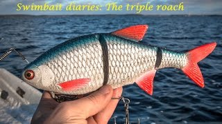 Swimbait chronicles: How i made  the triple roach soft swimbait