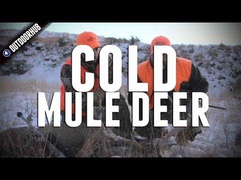 Nebraska Mule Deer Dropped In His Tracks