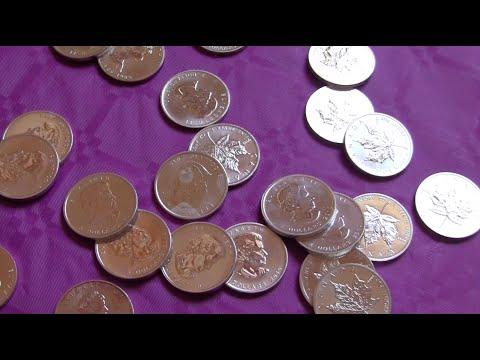 ASMR Silver Coins
