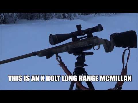 How To Pick A Predator Hunting Rifle