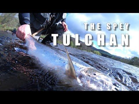 The River Spey - Atlantic Salmon From Tulchan B Broom Pool