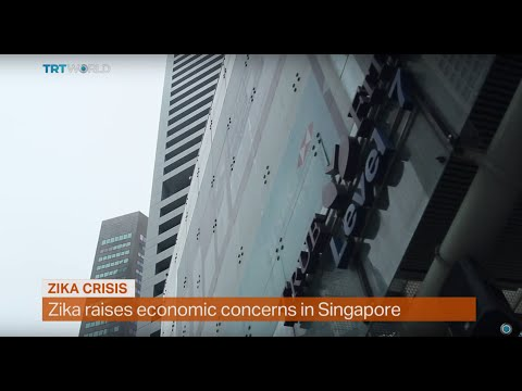 Money Talks: How Zika can effect Singapore's economy