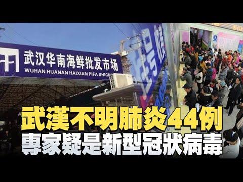 武漢不明肺炎44例-專家疑是新型冠狀病毒|黑鷹失事尋獲黑盒子-沈一鳴追晉一級上將|晚間8點新聞【2020年1月3日】|新唐人亞太電視