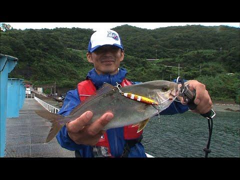 和歌山県シモツピアーランドでファミリーフィッシング(四季の釣り/2019年9月13日放送分)