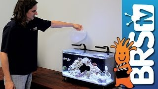 Setting up a Nano 16 Gallon Reef Tank: EP 1 - Nano 16 Reef Tank #nuvo16