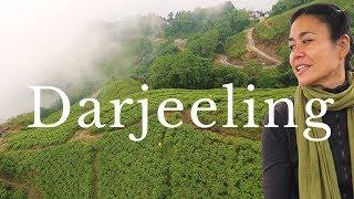 Video showing Darjeeling Travel Guide - 14 Things to do in Darjeeling