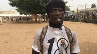 Magal 2018: Arrivée spectaculaire des bœufs de Cheikh Bethio Thioune à Touba