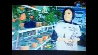 Роза шакирова/жаны клип