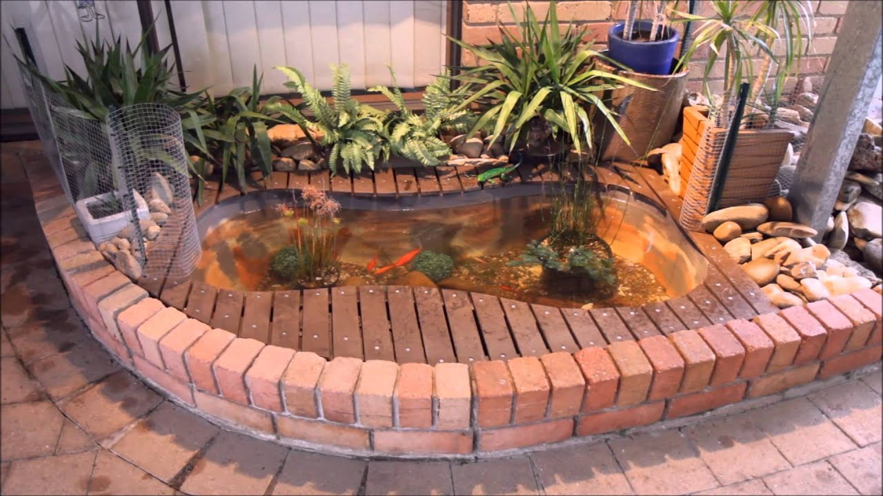 diy goldfish pond using bathtub build youtube