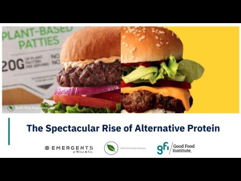 The Spectacular Rise of Alternative Proteins