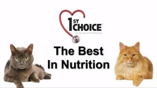 видео Корм для кошек 1st Choice (Фест Чойс): обзор, отзывы и цены