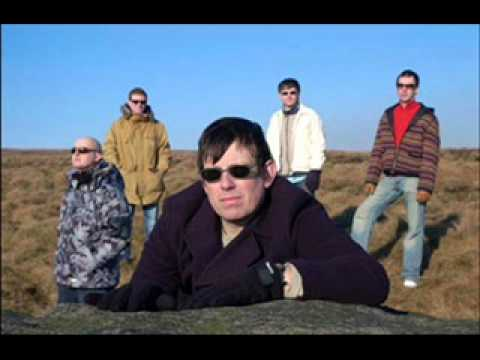 Inspiral Carpets: Well of Seven Heads