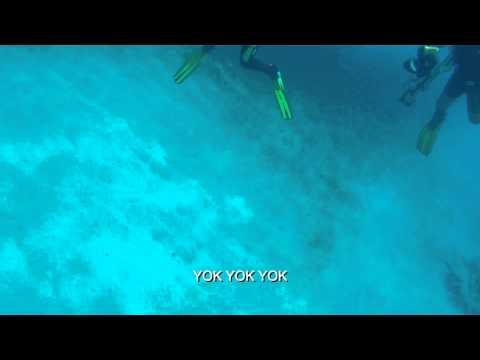 Tanrıya Feryat - Orhan Gencebay - Lyric Video- HD