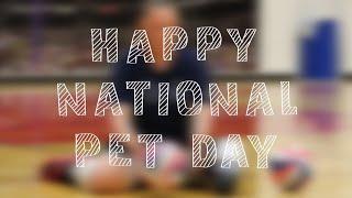 Monique Burkland | National Pet Day