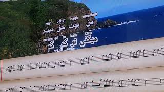 Persian (Farsi) Karaoke Song - Nabze Ehsas (original by Morteza pashaei)