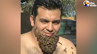 Man Grows Bee Beard