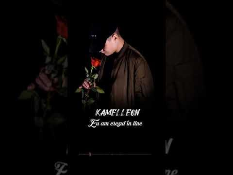 Kamelleon - Eu Am Crezut In Tine [Official Lyrics Video] (prod. Mine Dayone)