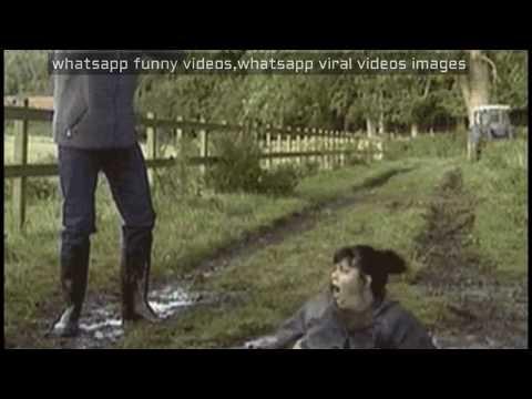 Funny Vedio 42