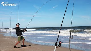 Beach Fishing Hacks: How Many Species of Fish Can We Catch?
