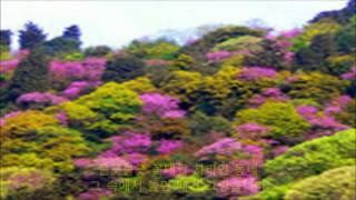 고향의 봄 - 리틀앤젤스(Springtime In Hometown)김동성 그림