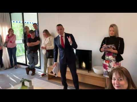 Levity in Bellevue Hill auction