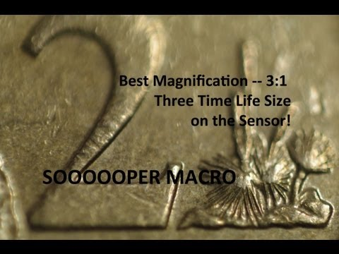 Intermediate Macro Techniques: What is the BEST Reverse-mount Lens for Macro Work?